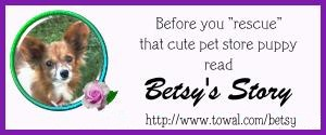 Betsy's Story